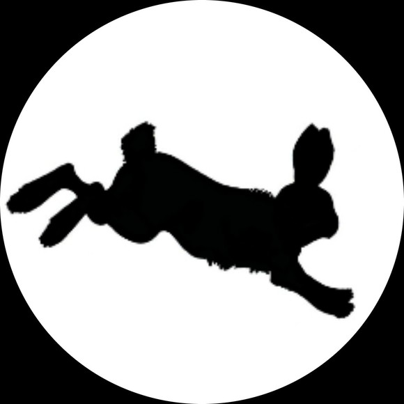rabbit_shoes